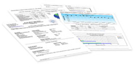 Blue-Book-Services-Business-Report